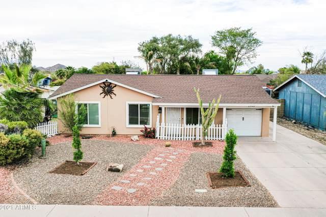 2908 E Villa Rita Drive, Phoenix, AZ 85032 (MLS #6221175) :: Sheli Stoddart Team | M.A.Z. Realty Professionals