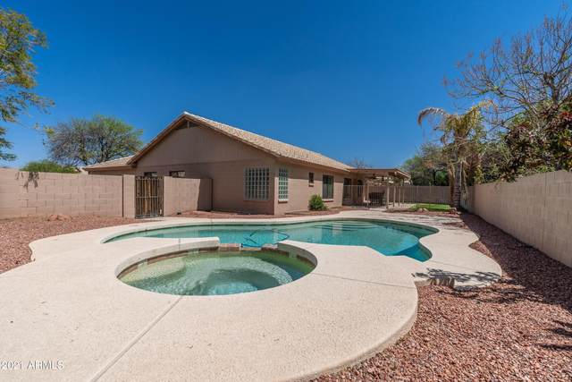 6553 E Palm Street, Mesa, AZ 85215 (MLS #6221199) :: My Home Group