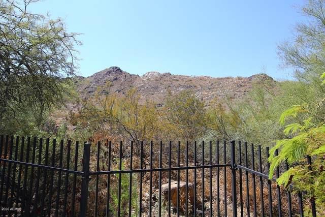 10020 N 23rd Street, Phoenix, AZ 85028 (MLS #6221219) :: neXGen Real Estate