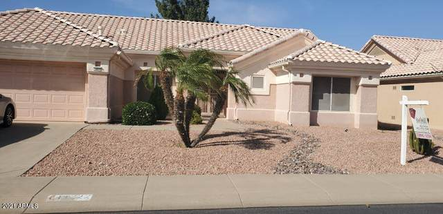 14222 W Pecos Lane, Sun City West, AZ 85375 (MLS #6221222) :: Midland Real Estate Alliance