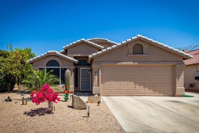 11599 W Buck Mountain Court, Surprise, AZ 85378 (MLS #6221238) :: Service First Realty