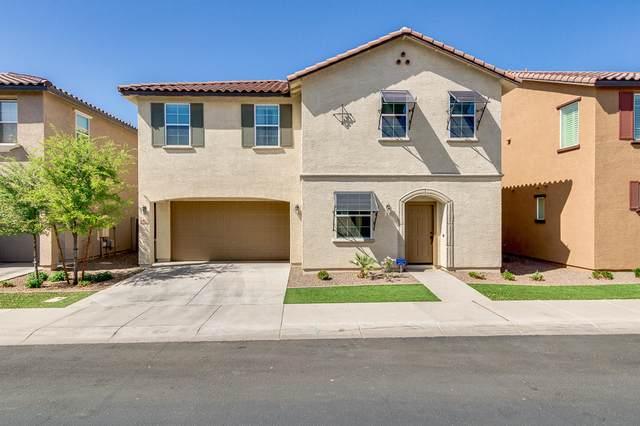 4132 E Toledo Street, Gilbert, AZ 85295 (MLS #6221253) :: Yost Realty Group at RE/MAX Casa Grande