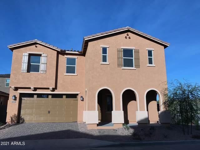 4716 E Daley Lane, Phoenix, AZ 85050 (MLS #6221254) :: Service First Realty