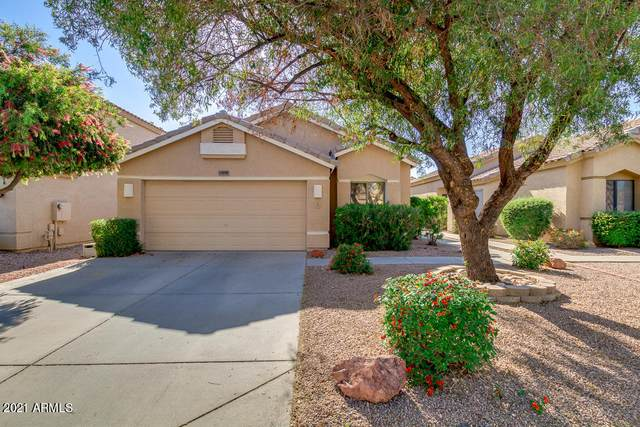 13858 N 91ST Drive, Peoria, AZ 85381 (MLS #6221271) :: The Carin Nguyen Team