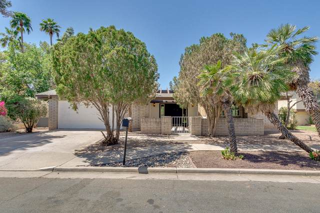 1831 W Nido Avenue, Mesa, AZ 85202 (MLS #6221279) :: My Home Group