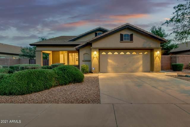 1171 E Indigo Drive, Chandler, AZ 85286 (MLS #6221309) :: The Property Partners at eXp Realty
