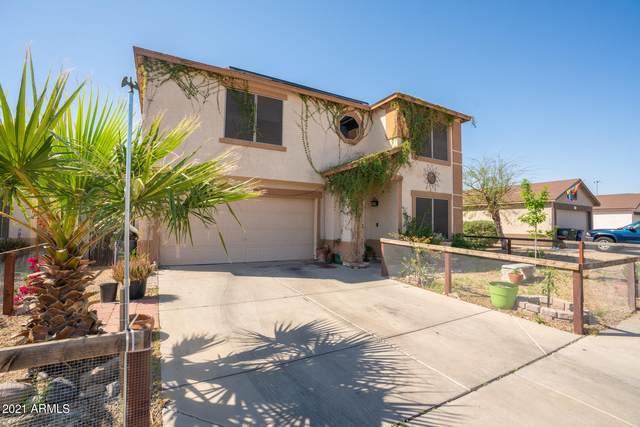 11517 W Scotts Drive, El Mirage, AZ 85335 (MLS #6221370) :: Yost Realty Group at RE/MAX Casa Grande