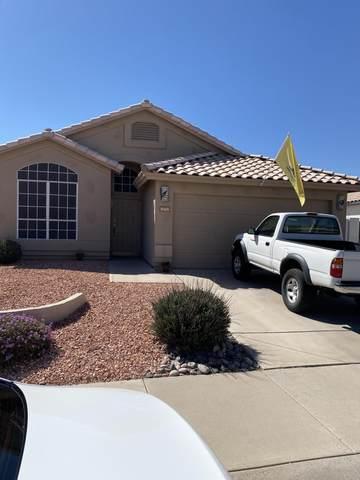 9365 E Caribbean Lane, Scottsdale, AZ 85260 (MLS #6221406) :: Dijkstra & Co.