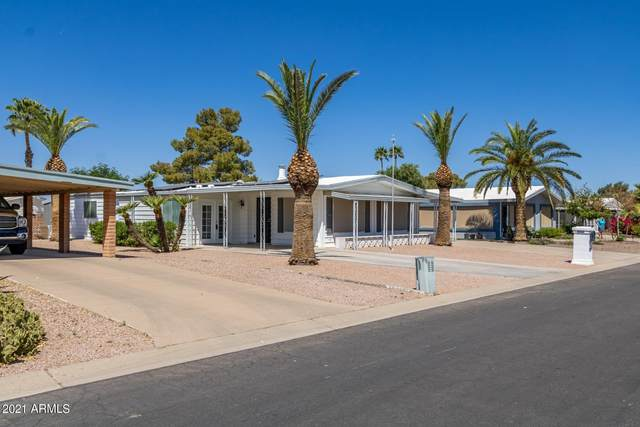 25850 S Montana Avenue, Sun Lakes, AZ 85248 (MLS #6221412) :: Dijkstra & Co.