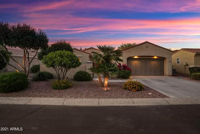 13540 W Nogales Drive, Sun City West, AZ 85375 (MLS #6221418) :: The Carin Nguyen Team