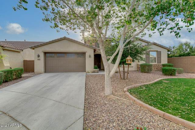 5554 S Tatum Court, Gilbert, AZ 85298 (MLS #6221447) :: Yost Realty Group at RE/MAX Casa Grande