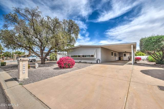 25403 S Wyoming Avenue, Sun Lakes, AZ 85248 (MLS #6221465) :: Sheli Stoddart Team | M.A.Z. Realty Professionals