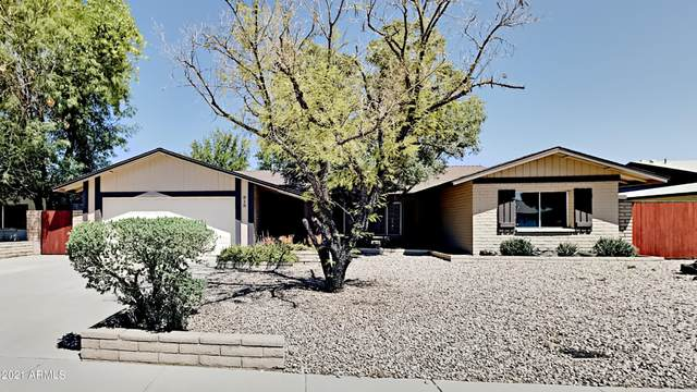 818 E Stephens Drive, Tempe, AZ 85283 (MLS #6221469) :: The Carin Nguyen Team