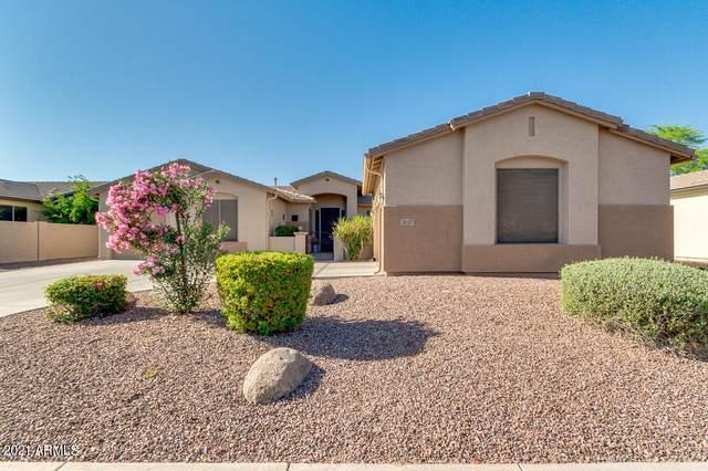 3057 E Blue Ridge Place, Chandler, AZ 85249 (MLS #6221487) :: Dijkstra & Co.