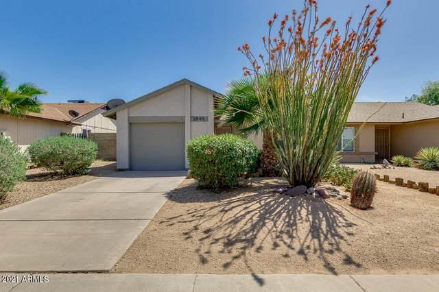 1845 E Kings Avenue, Phoenix, AZ 85022 (MLS #6221518) :: Service First Realty