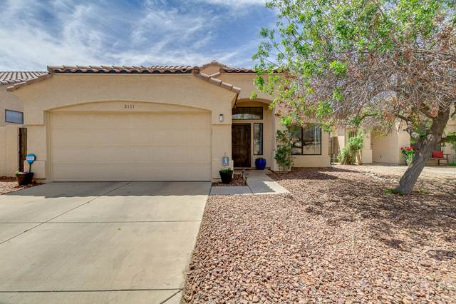 2101 W Carol Ann Way, Phoenix, AZ 85023 (MLS #6221553) :: Yost Realty Group at RE/MAX Casa Grande