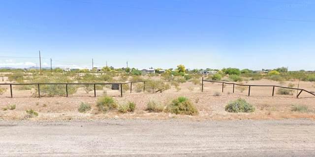 30217 N Crozier Road, Wittmann, AZ 85361 (MLS #6221607) :: Maison DeBlanc Real Estate