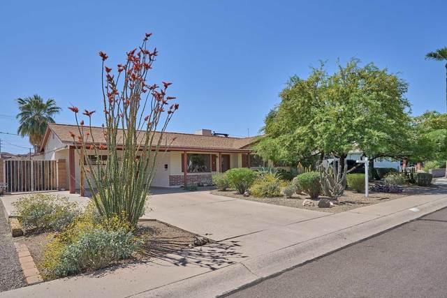 41 E Papago Drive, Tempe, AZ 85281 (MLS #6221622) :: Yost Realty Group at RE/MAX Casa Grande