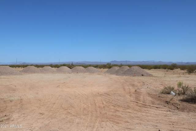 30905 N 251st Avenue, Wittmann, AZ 85361 (MLS #6221648) :: Long Realty West Valley