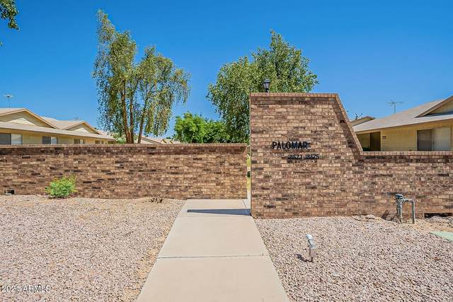 18647 N Palomar Drive, Sun City West, AZ 85375 (MLS #6221661) :: Devor Real Estate Associates