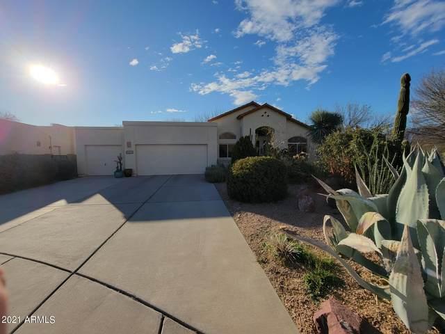 2211 N Wild Hyacinth Drive, Tucson, AZ 85715 (MLS #6221733) :: The Laughton Team