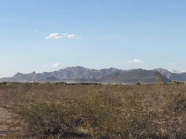 386xx W San Juan Avenue, Tonopah, AZ 85354 (MLS #6221739) :: The Riddle Group