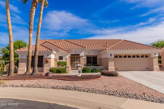 22215 N Cheyenne Drive, Sun City West, AZ 85375 (MLS #6221759) :: Yost Realty Group at RE/MAX Casa Grande