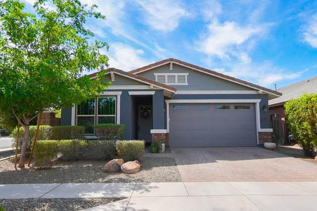 3437 E Strawberry Drive, Gilbert, AZ 85298 (MLS #6221779) :: Keller Williams Realty Phoenix