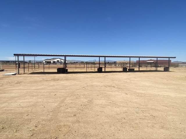 20902 W Bradley Road, Wittmann, AZ 85361 (MLS #6221849) :: Maison DeBlanc Real Estate
