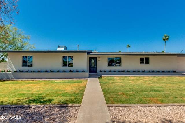 6650 E Rustic Drive, Mesa, AZ 85215 (MLS #6221857) :: Yost Realty Group at RE/MAX Casa Grande