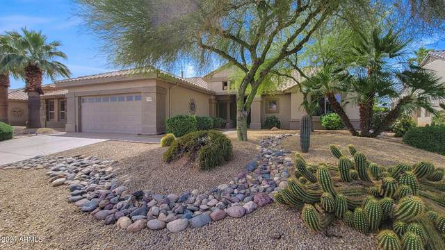 17496 N Escalante Lane, Surprise, AZ 85374 (#6221895) :: Luxury Group - Realty Executives Arizona Properties