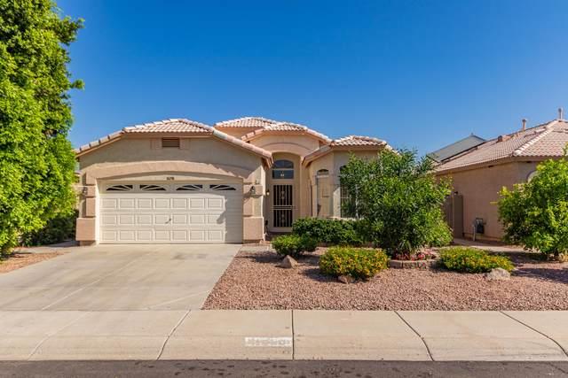 11058 W Tonto Lane, Sun City, AZ 85373 (MLS #6221897) :: Yost Realty Group at RE/MAX Casa Grande