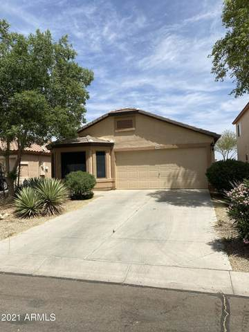 29445 N Pyrite Lane, San Tan Valley, AZ 85143 (MLS #6221904) :: Yost Realty Group at RE/MAX Casa Grande