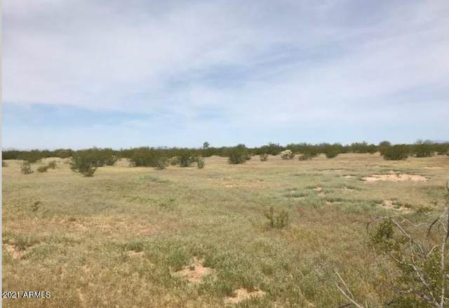 0 N Dead Mans Gulch Road, Florence, AZ 85132 (MLS #6221964) :: The Riddle Group