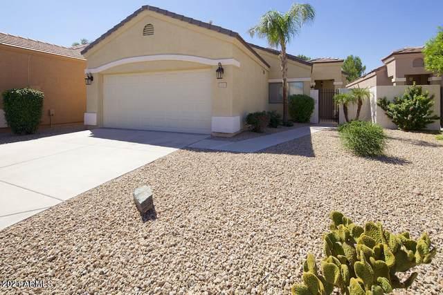 3247 E Maldonado Drive, Phoenix, AZ 85042 (MLS #6221984) :: Yost Realty Group at RE/MAX Casa Grande