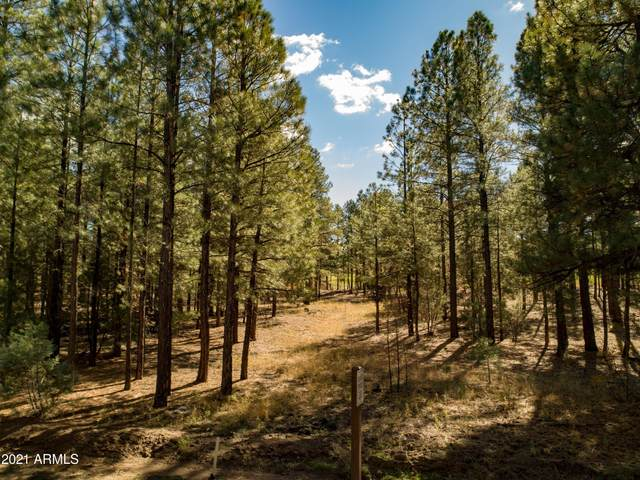 2641 W Falling Leaf Road, Show Low, AZ 85901 (MLS #6221988) :: The Newman Team