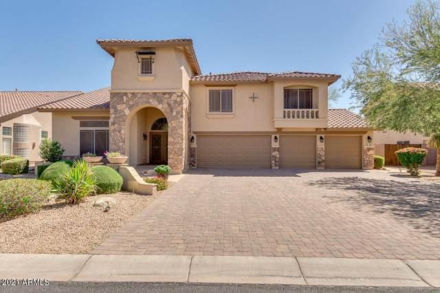 9821 W Jasmine Trail, Peoria, AZ 85383 (MLS #6222026) :: Yost Realty Group at RE/MAX Casa Grande