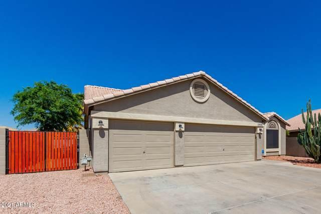 15616 N 161ST Avenue, Surprise, AZ 85374 (MLS #6222030) :: Sheli Stoddart Team | M.A.Z. Realty Professionals