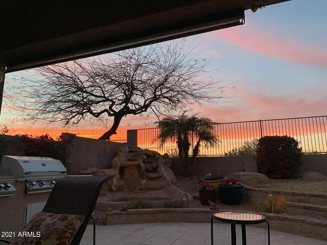 7420 E Christmas Cholla Drive, Scottsdale, AZ 85255 (MLS #6222031) :: Sheli Stoddart Team | M.A.Z. Realty Professionals