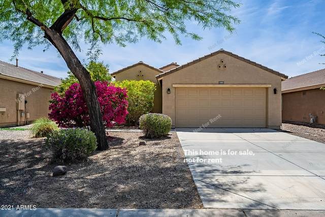 1403 W Belmont Red Trail, San Tan Valley, AZ 85143 (MLS #6222035) :: The Property Partners at eXp Realty