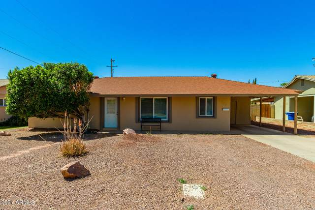 724 N Evergreen Street, Chandler, AZ 85225 (MLS #6222059) :: Yost Realty Group at RE/MAX Casa Grande