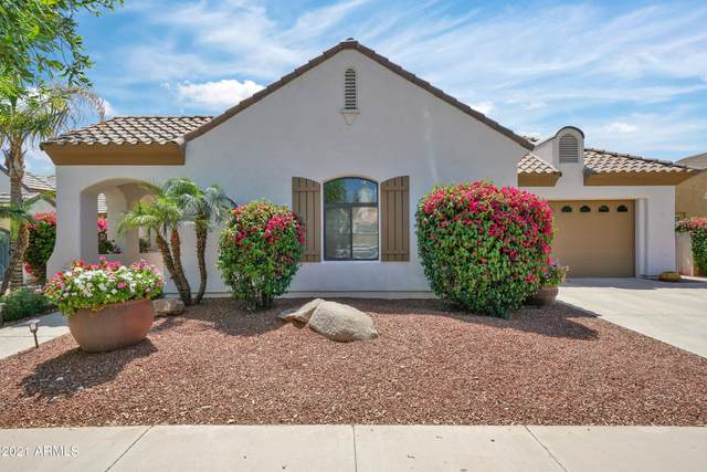 945 W Sycamore Lane, Litchfield Park, AZ 85340 (MLS #6222082) :: Sheli Stoddart Team | M.A.Z. Realty Professionals
