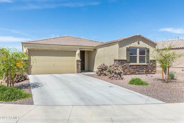 7778 S Agassiz Peak Court, Gold Canyon, AZ 85118 (MLS #6222123) :: Yost Realty Group at RE/MAX Casa Grande