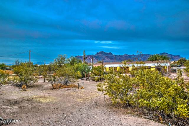 1421 S Conestoga Road, Apache Junction, AZ 85119 (MLS #6222133) :: Dave Fernandez Team | HomeSmart