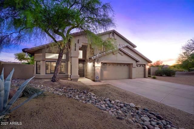 26224 N 46th Street, Phoenix, AZ 85050 (MLS #6222149) :: Dave Fernandez Team | HomeSmart