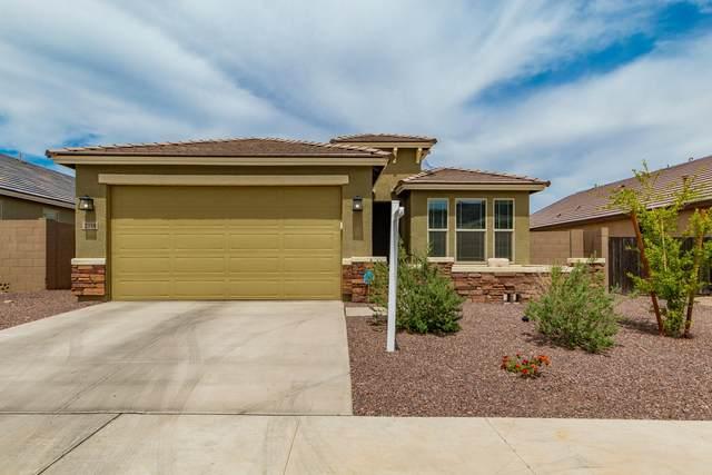 2316 E Beautiful Lane, Phoenix, AZ 85042 (#6222161) :: AZ Power Team
