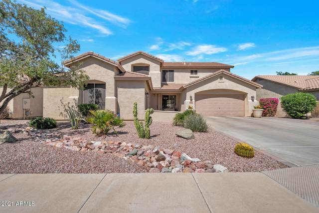 2244 E La Costa Place, Chandler, AZ 85249 (MLS #6222194) :: Power Realty Group Model Home Center