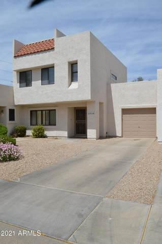 2550 W Kathleen Road, Phoenix, AZ 85023 (MLS #6222200) :: Yost Realty Group at RE/MAX Casa Grande
