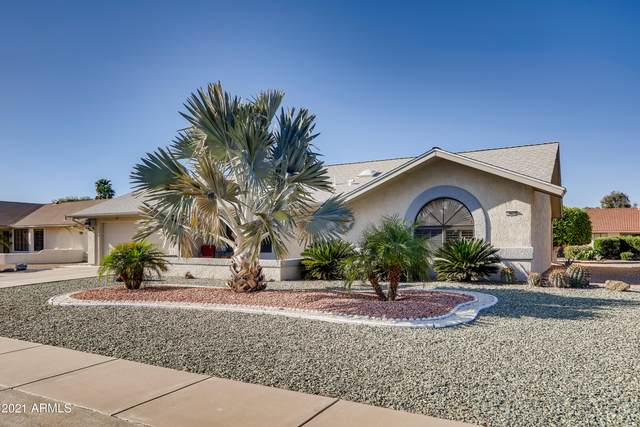 14027 W Aleppo Drive, Sun City West, AZ 85375 (MLS #6222202) :: Midland Real Estate Alliance