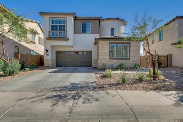 189 E Desert Broom Drive, Chandler, AZ 85286 (MLS #6222214) :: Yost Realty Group at RE/MAX Casa Grande
